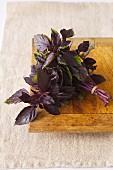 Purple Thai Basil