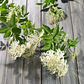 Elderflowers on a wooden surface