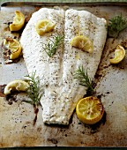 Halibut with Lemons and Rosmarin