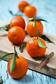 Several mandarins with leaves on a chopping board