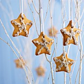 Gingerbread stars on branches