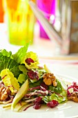 Romaine salad with red cabbage, pears, dried cranberries and walnuts
