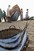 Swordfish in a basket and fishermen on the beach at Arugam Bay (Sri Lanka)