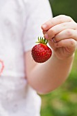 Child Holding a Strawberry by the Stem; Outside