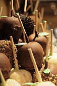 Toffee apples coated with nuts and nut brittle at the Christmas market