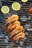 A prawn skewer on a charcoal grill