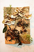 Ingredients for a marinade with mushrooms and herbs
