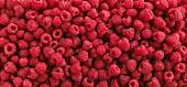 Fresh Whole Raspberries