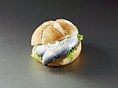 Herring in a bun with onions