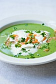 Mange tout soup with smoked salmon and chervil