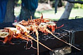 Lobster and crayfish on the barbecue