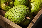 Soursop fruit in a crate