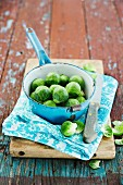 Brussels sprouts in a pot