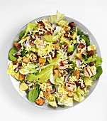 Salad with grilled turkey, cheese and croutons