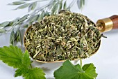 A mixture of herbs on a brass scoop (oats, stinging nettle, lady's mantle)