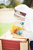 A beekeeper wearing a protective suit with a honeycomb