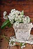 Wild garlic flowers in a stone vase