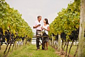 Couple tasting wine together in vineyard