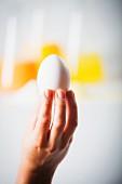 Hand hält ein Ei vor Laborflaschen mit Eigelb, Eiweiss und Eiermischung
