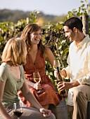 Informal Outdoor Wine Tasting at Vineyard, Rocheport, Missouri