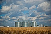 Dramatic Clouds Over Farm Silos, Wisconsin, USA