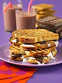Smores and hot chocolate