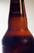 Condensation on Chilled Beer Bottle