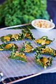 Grünkohlchips mit Käse-Cashewnuss-Sauce