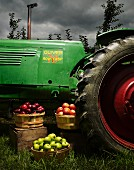 Tractor and Baskets of Apples