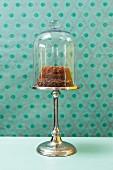 A mini Bundt cake under a glass cloche on a cake stand