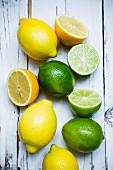Frische Zitronen und Limetten
