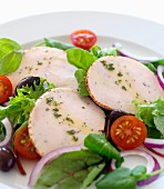 herb chicken slices with salad