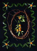 Kumquats and Leaf Arrangement