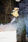 Beekeeper Smoking Beehive