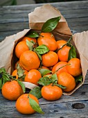 Clementine oranges with stems and leaves attached spilling out of a brown paper bag onto a rustic table