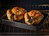 Two chickens in roasting pan coming out of the oven with rosemary stuffed in the cavities