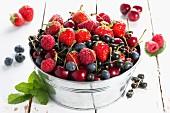 Verschiedene rote Früchte im Metalleimer