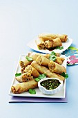 Spring rolls filled with vegetables and minced meat