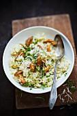 Chanterelle mushroom risotto