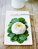 Goat's cheese with olive oil, salt and pepper on a bed of spinach