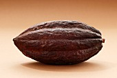 A cacao fruit
