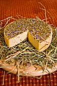 Magdalene cheese from Salzburg on a bed of hay