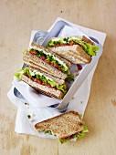 Tomato and hummus sandwiches in a picnic box