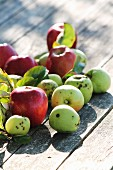 Red and green apples on wooden surface