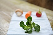 A sprig of lamb's lettuce on a napkin with vegetables in the background