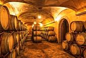 Großer Weinkeller mit gelagerten Eichenfässern