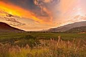 Sonnenuntergang über dem Weingut Altair (Cachapoal Valley, Chile)