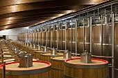 Fässer & Edelstahltanks in Cuverie des Weingutes Terre da Vino (Piemont, Italien)