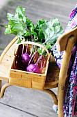 Kohlrabi in a basket