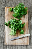 Two bunches of purslane